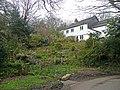 Cottage and wild garden - geograph.org.uk - 750114.jpg
