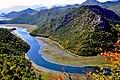Crnojevica rijeka.jpg