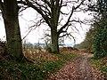 Cumbers Lane, near Borden - geograph.org.uk - 708613.jpg