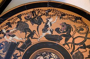 Vitis vinifera - Grape harvest on Etruscan terracotta from the 6th century BC