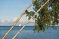 Curonian Lagoon 2019-08-21-2.jpg