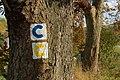 Cyklochodník ikon, Kalná Roztoka - panoramio.jpg