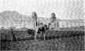 D221-labourage dans la plaine de memnonia.-L2-Ch6.png