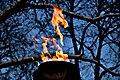 Dance of the flames (4235306275).jpg