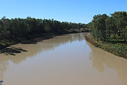Darling River near Bourke, New South Wales.JPG