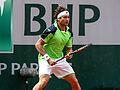 David Ferrer - Roland Garros 2013 - 010.jpg