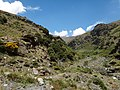 Day 3-6 Capileira to Refugio de Poqueira - panoramio (2).jpg