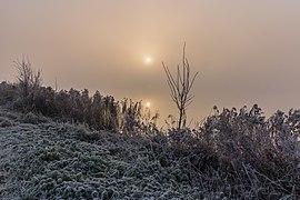 De zon probeert door de mist te breken. Locatie, Langweerderwielen (Langwarder Wielen) en omgeving 05.jpg