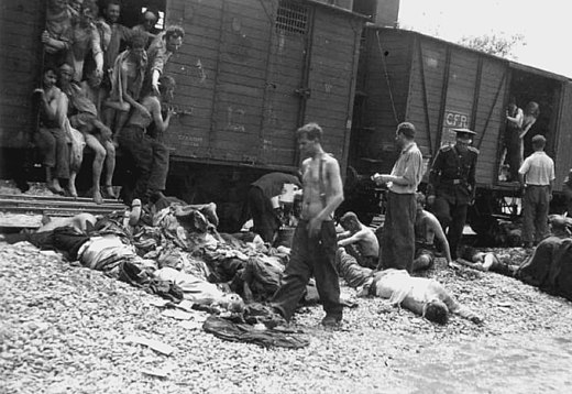 Bodies being pulled out of a train carrying Romanian Jews from the Iasi pogrom, July 1941 Death train from Iasi.jpg