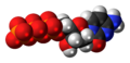Deoxycytidine triphosphate anion 3D spacefill.png