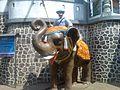 Dervan Shivsrushti Entrance. - panoramio.jpg