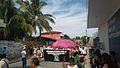 Desfile feria del mango 2016 15.jpg