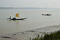 Desi Boats - River Ichamati - Taki - North 24 Parganas 2015-01-13 4386.JPG