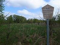 Dessau-Roßlau, Kleutsch, natural monument, information board.jpg