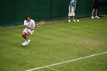 Diego Junqueira at the 2009 Wimbledon Championships 01.jpg