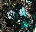 Dioptase-282552.jpg