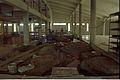 Diorama Sundarbans Under Construction - Space Odyssey - Science City - Calcutta 1996-07-30 312.JPG