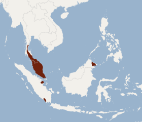 Distribution of Phoniscus atrox.png