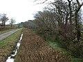 Ditches near Shepherds Bush Farm - geograph.org.uk - 682004.jpg