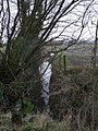 Drainage ditch - geograph.org.uk - 1161879.jpg