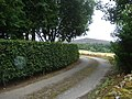 Driveway to Pittendreigh - geograph.org.uk - 887418.jpg