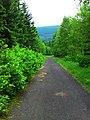 Droga na Biały Kamień 2 - panoramio.jpg