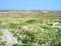 Dunas do Baleal - Portugal (1371538840).jpg