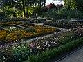 Dye Garden 2, Horniman Museum, Forest Hill.jpg