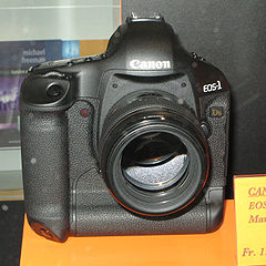 EOS 1Ds Mark III img 0826.jpg