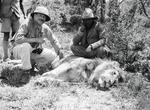 ETH-BIB-Jäger mit geschossenem Löwe-Kilimanjaroflug 1929-30-LBS MH02-07-0369.tif