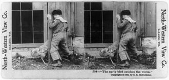 "Stereo display - ""The early bird catches the worm"" Stereograph published in 1900 by North-Western View Co. of Baraboo, Wisconsin, digitally restored."
