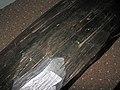 Ebony wood 8 (27684268626).jpg
