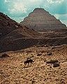 Egypt's Desert.jpg