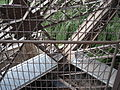 Eiffel Tower 18 July 2005 - detail 03.jpg