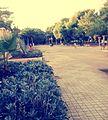 El bayadh centre ville.jpg