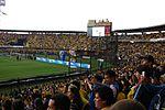 Estadio Nemesio Camacho (2009)