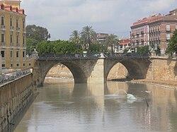 El riu Segura al seu pas per Múrcia