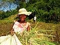 Enfants De Adagascar Children From Madagascar (130869809).jpeg