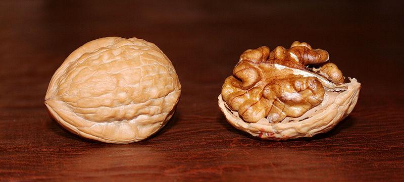 walnut by Digon