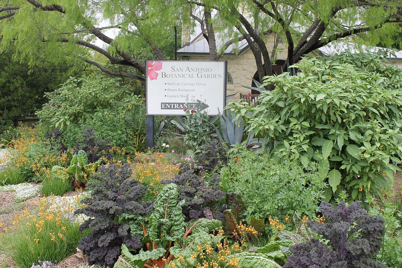 File Entrance To San Antonio Botanical Garden Tx Img 5308 Jpg Wikimedia Commons