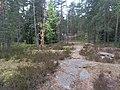 Espoo, Finland - panoramio (33).jpg