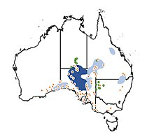 Extant and historical distribution of the plains rat across Australia.jpg