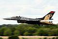 F16 - RIAT 2014 (14787616135).jpg