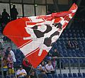 FC Red Bull Salzburg g SK Sturm Graz 33.JPG
