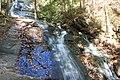 Falls Branch Falls - panoramio.jpg
