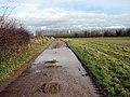 Farm track leading east - geograph.org.uk - 1127134.jpg