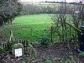Farmland, A435, near Bagendon - geograph.org.uk - 1122134.jpg