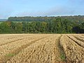 Farmland, Stokenchurch - geograph.org.uk - 1013301.jpg