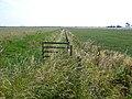 Farmland from Frampton Roads, Frampton Marsh, Lincs - geograph.org.uk - 227590.jpg