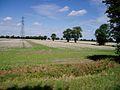 Farmland near Snout Corner - geograph.org.uk - 44612.jpg